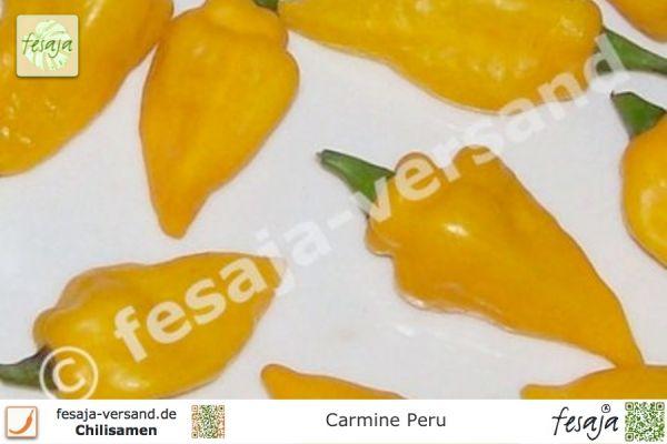 Carmine Peru