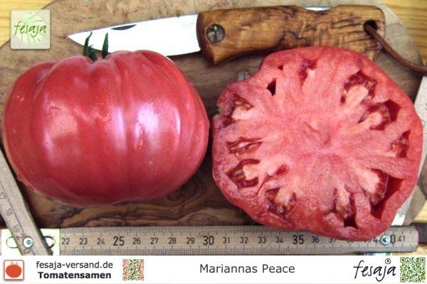 Mariannas Peace