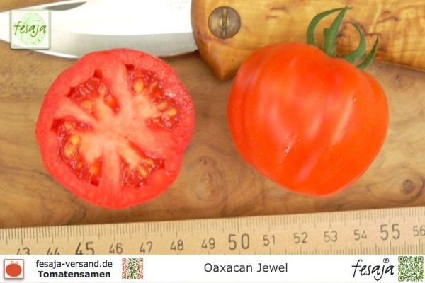 Oaxacan Jewel