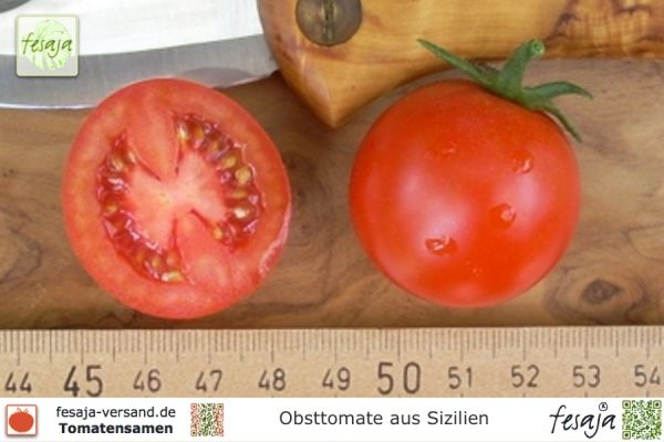 Obsttomate aus Sizilien