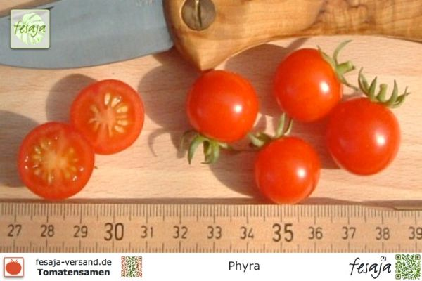 Phyra
