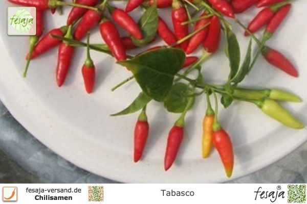 Chili Tabasco
