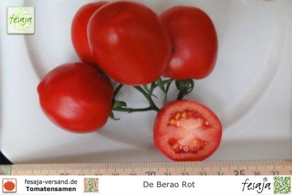 de berao rot tomaten samen fesaja versand. Black Bedroom Furniture Sets. Home Design Ideas