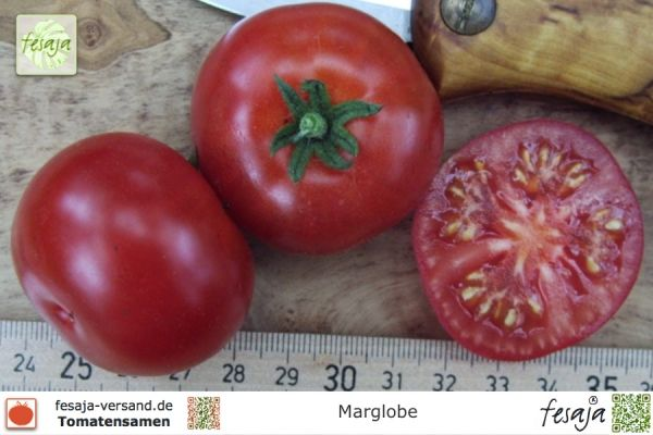 Tomate Marglob