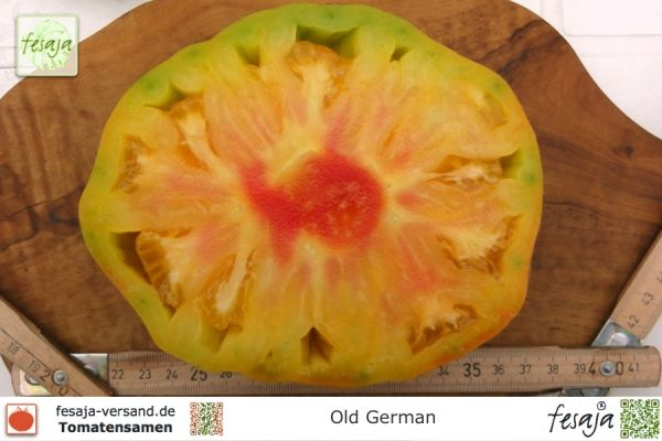 Tomate Old German