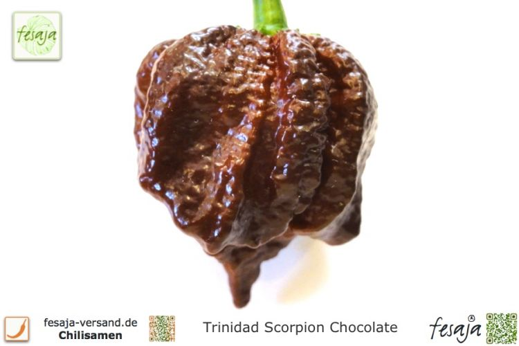 Chili Trinidad Scorpion Chocolate